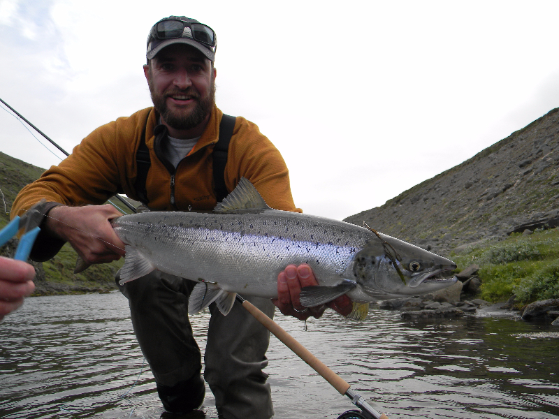 swung fly salmon
