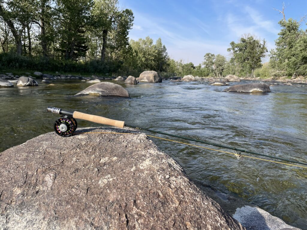 mountain trout stream fly fishing