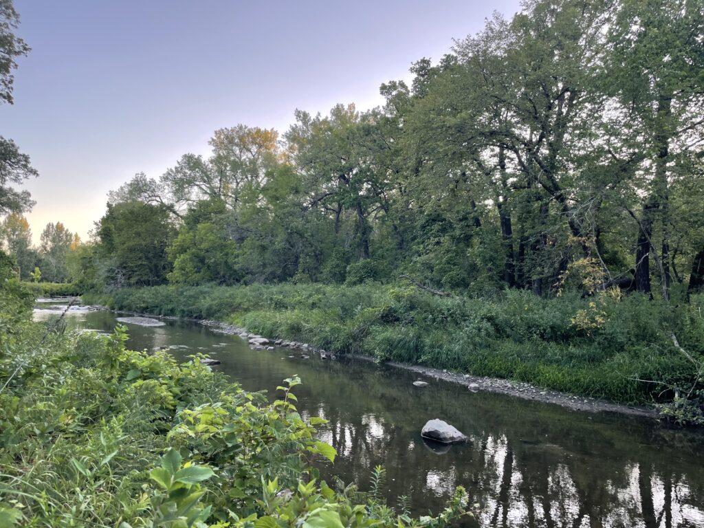 minnesota smallmouth river